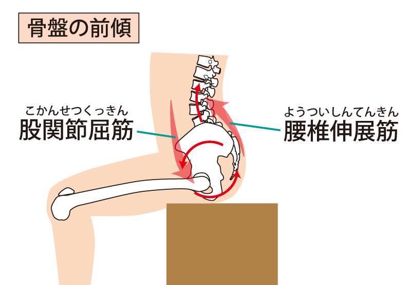 なぜ腸腰筋が腰痛に関係する?